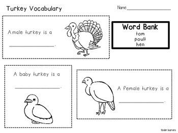 TURKEY FAMILY VOCABULARY
