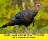 READING AND WRITING ABOUT TURKEYS! CCSS, SOME SPANISH, THANKSGIVING-XMAS GOODIE
