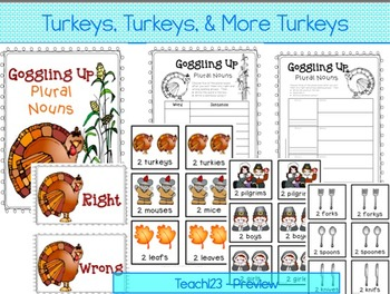 TURKEY, Turkey, and More Turkeys