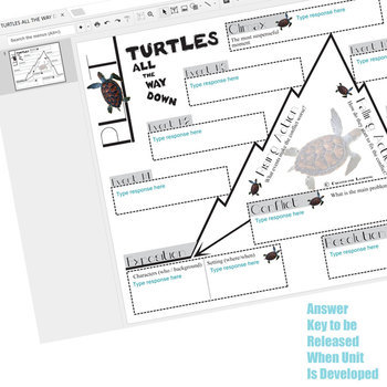 TURTLES ALL THE WAY DOWN Plot Chart - Freytag's Pyramid (Created for Digital)
