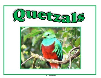 Student Group Posters - Unusual Birds