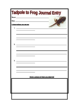 Tadpole Observation Journal
