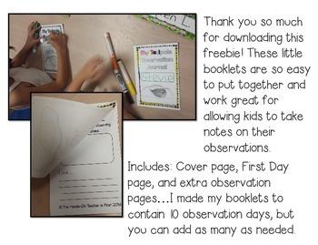 Tadpole Observation Journals FREE