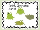 Tadpole to Frog obsevation Journal