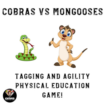 Tagging and Agility Physical Education Game!  Cobras and Mongooses