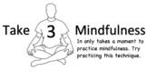 Take 3 Mindfulness Exercise