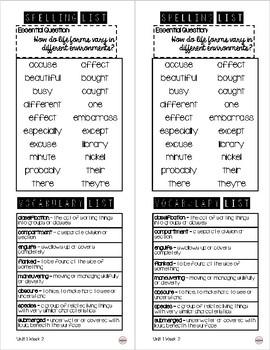 Take Home Spelling & Vocabulary List Grade 6