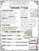 Take a Closer Look: Close Reading for First Grade Bundle!