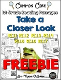 Take a Closer Look: Nonfiction Close Reading for First Grade Freebie