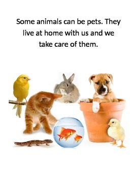 Taking Care of Pets Story, Matching Cards and Worksheet
