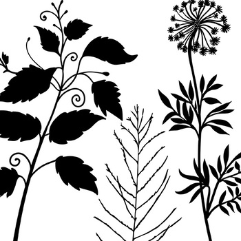 Tall Foliage ClipArt, Digital Stamps, Nature Silhouettes