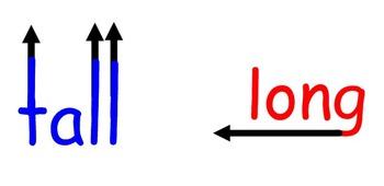 Tall vs. Long Visual