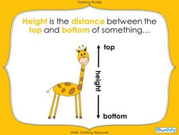 Taller or Shorter