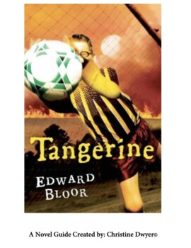 tangerine novel study teaching resources teachers pay teachers rh teacherspayteachers com tangerine study guide questions and answers tangerine study guide answers quizlet