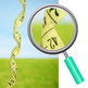 Tape Measures Photo Clip Art for Commercial Use