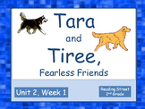 Tara and Tiree, Fearless Friends, 2nd Grade, PowerPoints for Intervention Groups
