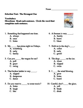 Tara and Tiree  Vocabulary Match and Selection Test Guided Reading