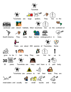 Tarantula - Picture supported text article lesson facts questions info