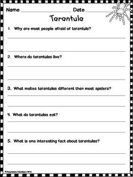 Tarantulas Informational Text: Main Idea, Comprehension Questions, Facts