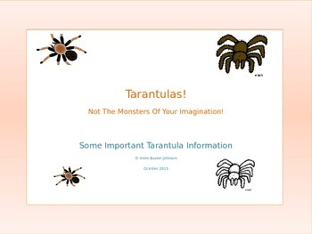 Tarantulas--Not The Monsters Of Your Imagination