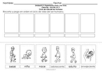 Tareas de desempeño Unidad K.5 - Kinder