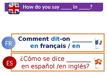 Target language posters in French and Spanish