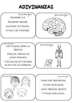Tarjetas Adivinanzas Proyecto Cuerpo Humano