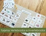 Vertebrado e Invertebrado/Vertebrate and Invertebrate Span