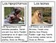 Tarjetas con datos de animales de Africa