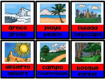 Tarjetas de Ciencias (English & Spanish Science Vocabulary Cards)