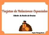 Tarjetas de Relaciones Espaciales Edición Acción de Gracias