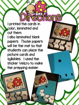 Tarjetas de sílabas-Insectos y plantas