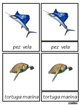 Tarjetas en 3 Partes Montessori Animales marinos