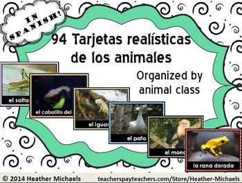 Tarjetas realisticas de los animales / Animal Vocabulary Flashcards in Spanish