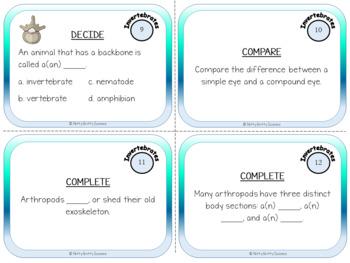Animal Diversity: Invertebrates - Life Science Task Cards