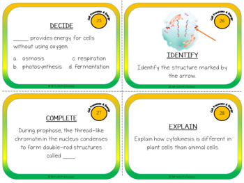 Cell Processes and Energy - Life Science Task Cards