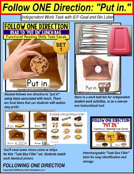 """FOLLOW ONE DIRECTION Task Cards """"Task Box Filler"""" Autism Resource"""
