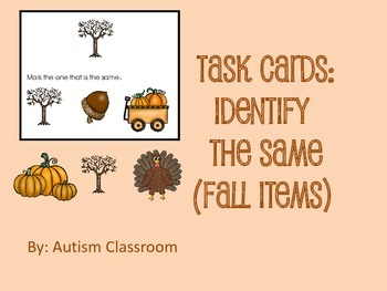Task Cards -Identify the Same (Fall Items) by Autism Classroom