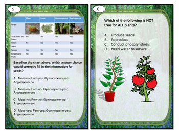 Task Cards Scoot Activity Plant Classification, Structure, and Reproduction
