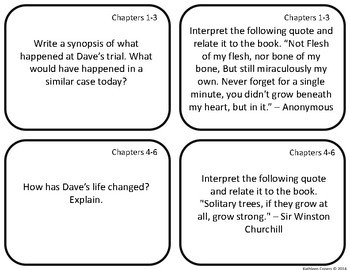Task Cards for the memoir The Lost Boy by David Pelzer