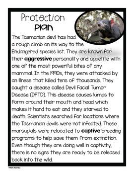 Tasmanian Devil-A Research Project