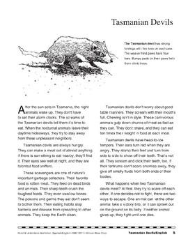 Tasmanian Devils/Los diablos de Tasmania