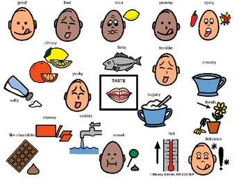 Taste Sense- 5 Senses, What does it taste like? Visual Wordbank