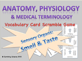 Taste & Smell: Anatomy& Medical Terminology Vocabulary Scramble Puzzle