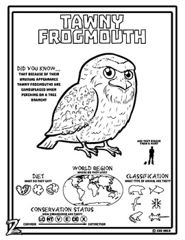 Tawny Frogmouth -- 10 Resources -- Coloring Pages, Reading & Activities