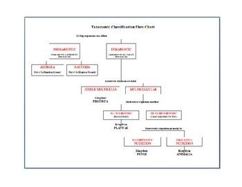 Taxonomic Classification Notes & Chart