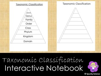 Taxonomic Classification Triangle INB Activity