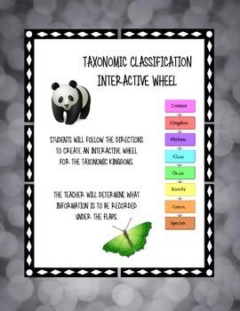 Taxonomic Classification Wheel - Kingdoms