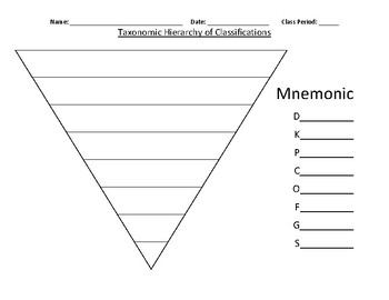 Taxonomic Hierarchy of Classifications