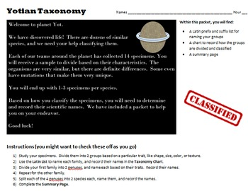 Taxonomy Activity with Marbles